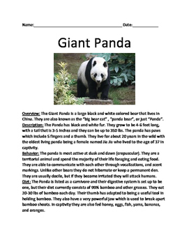 Giant Panda - informational  lesson facts questions true/f