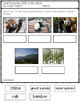 Giant Pandas: Gifts from China- Vocabulary and Comprehension