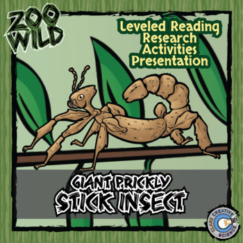 Giant Prickly Stick Insect - 10 Resources - Coloring Pages