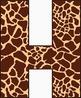 Giraffe Alphabet – Full Set of Characters — Latin, Numbers