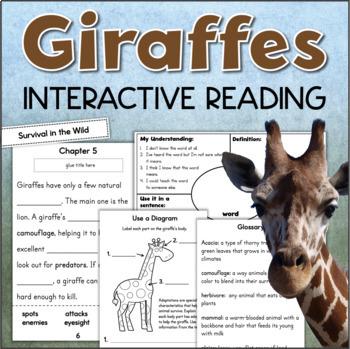 Giraffes Interactive Reading Comprehension