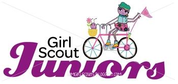 Girl Scout Junior Website Graphic