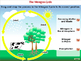 Global Warming CAUSES: Greenhouse Gases: Nitrous Oxide - M