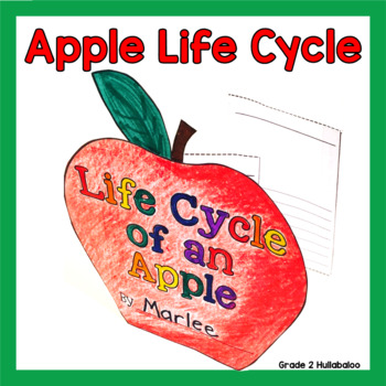 Apple Life Cycle Informational Texts, Close Reading Questi
