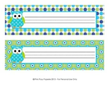 Blue and Green Owl Theme Classroom Decor Desk Name Plates