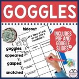 Goggles Guided Reading Unit by Ezra Jack Keats