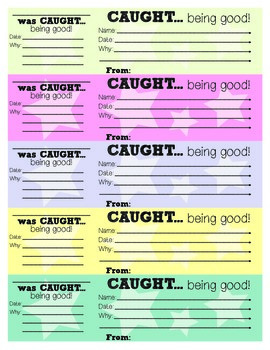 Good Behavior Slips