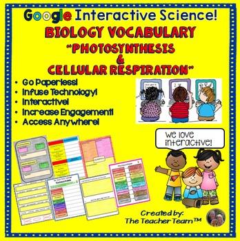 Google Drive Biology Photosynthesis-Respiration Vocabulary