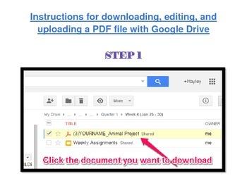 Google Drive and PDF File Editing