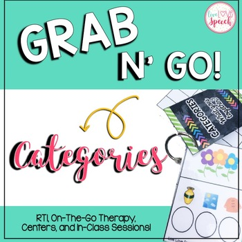 Grab N' Go Categories {Sorting, Classifying, & MORE!}