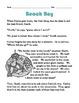 Grade 2 Common Core Reading: Beach Boy