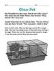 Grade 2 Common Core Reading: Class Pet