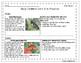 Grade 2 Daily Common Core Reading Practice Weeks 11-15 {LMI}