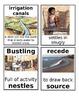Grade 2: Domain 2 Core Vocabulary Image Cards