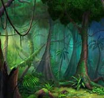 Grade 5 ELA Module 2A Rainforests