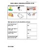 Grade 5 Science - Forces - Review and Test