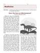 Grade 6 Common Core Reading: Informational Texts Bundle