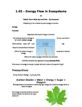Grade 9 - Biology Lesson 02 - Energy Flow in Ecosystems
