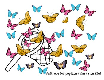 Grade1 graphing with butterflies- french immersion