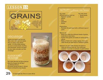 Grains - Food Groups