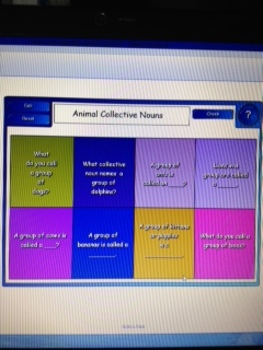 2nd Grade Common Core Grammar 2.L.1 Lessons and Practice S