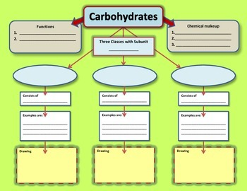 Graphic Organizer for Carbohydrates
