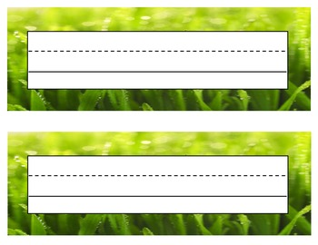Grass Name Tags / Labels