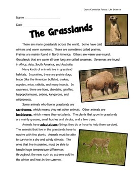 Grasslands Habitat