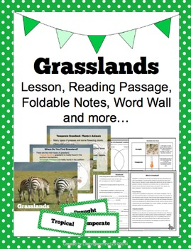 Grasslands: Lesson, Reading Passage, Foldable Notes, Word