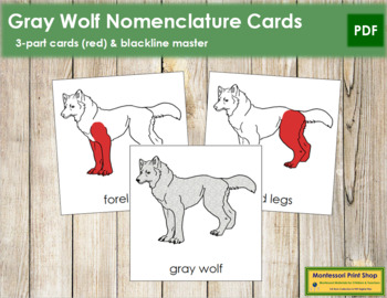 Gray Wolf Nomenclature Cards - Red