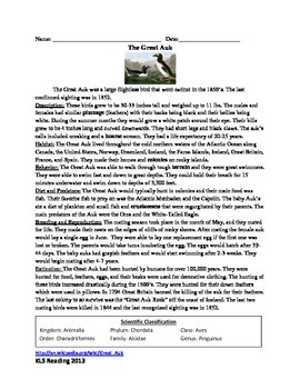 Great Auk - Review Article questions vocabulary activities