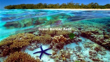 Great Barrier Reef Power Point - All the facts with great