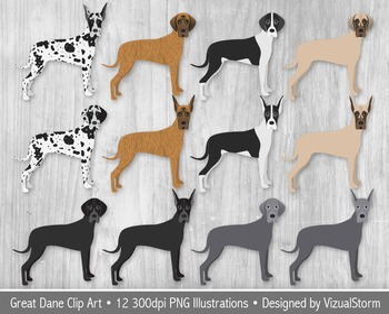 Great Dane Clip Art, 12 Hand Drawn Dog Illustrations - Var