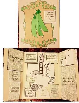 Gregor Mendel Lap Book