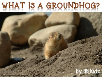 Groundhog Day Facts {A Groundhog Fact Booklet} Kindergarten