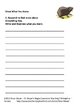 Groundhog Day Poetry Packet