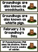 Groundhog's Day Resources