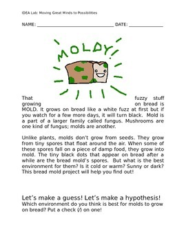 Growing Mold Science Experiment