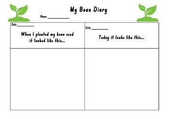 Growing a bean Diary