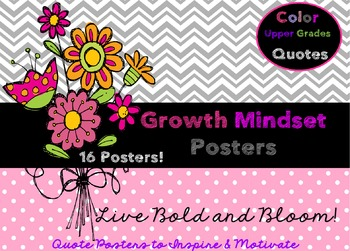 Growth Mindset Posters (Great for 4th-12th Grades!)