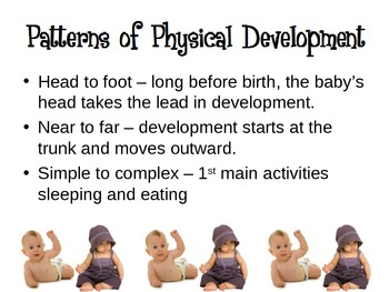 Growth and Development of Infants Powerpoint for Child Dev
