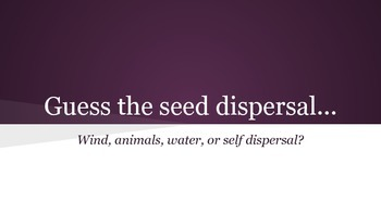Guess the Seed Dispersal