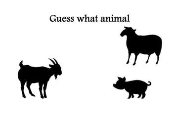 Guess what animal-farm 2