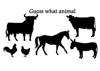 Guess what animal-farm