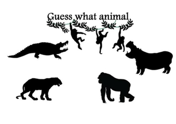 Guess what animal-jungle
