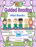 Sight Words guiding reading Mini Books K-1 Literacy Centers