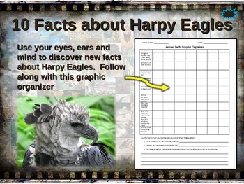 HARPY EAGLES: 10 facts. Fun, engaging PPT (w links & free