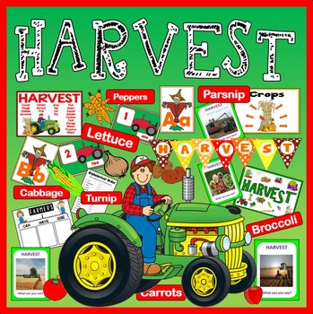 HARVEST FESTIVAL AND FARM SHOP ROLE PLAY SCIENCE FOOD EYFS