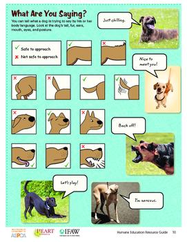 HEART (Humane Education): Lesson 1 - Communication and Emp
