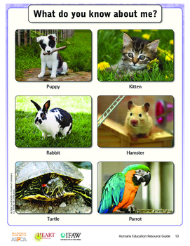 HEART (Humane Education): Lesson 2 - Companion Animal Advo